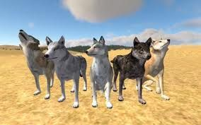 wolf_quest.jpg